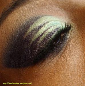 fard MAC shadowy lady, 252 ultimate palette coastal scents.